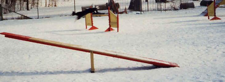Ratsastuskenttä 2:n nimi on kenties hämäävä - siellä toki voi ratsastaa, mutta useammin kentällä on koirien agilityesteet. Talvella suurinosa siirretään maneesiin, tässä kevättalvea ja osa jo ulkona. (maneesi melko täynnä koska myös hevosten esteet ovat siellä)